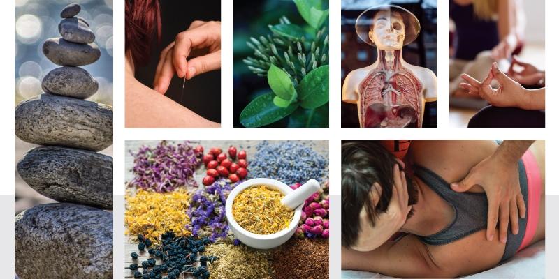 La Naturopatia e le cure tradizionali
