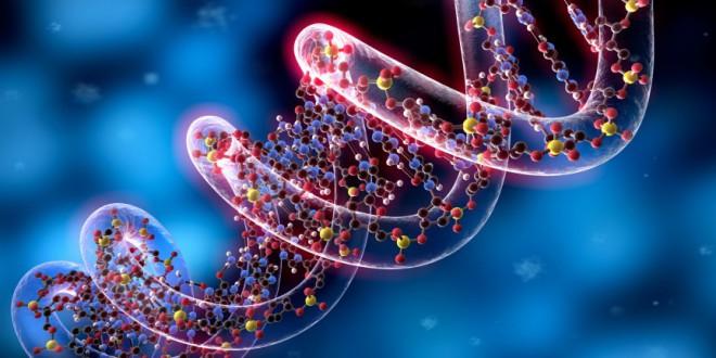 Cellule staminali e Naturopatia